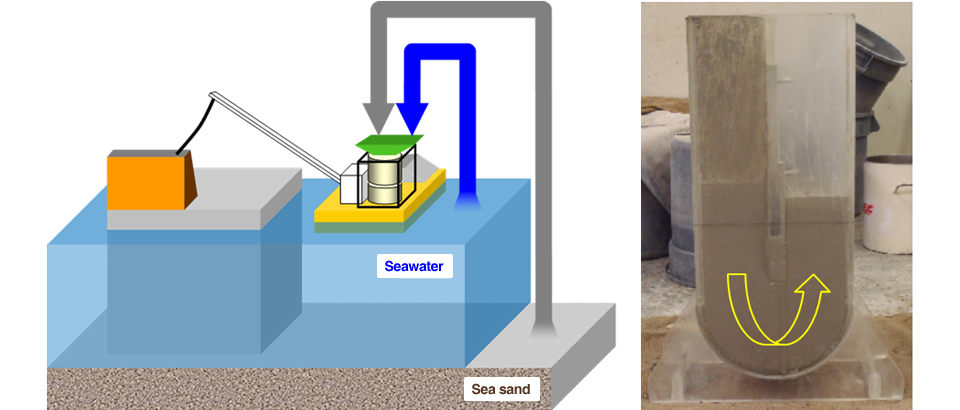 Self-Compacting Concrete Using Sea Water and Sea Sand: SALSEC