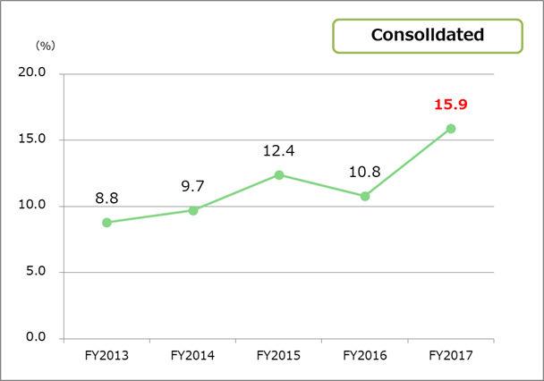 Return on equity (ROE) consolidated