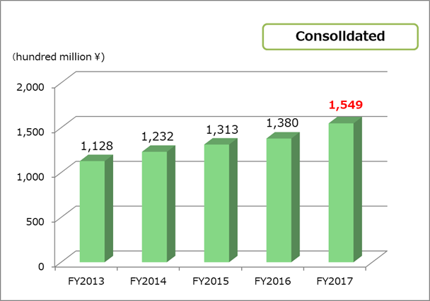 Total asset consolidated