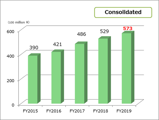Total net asset  consolidated